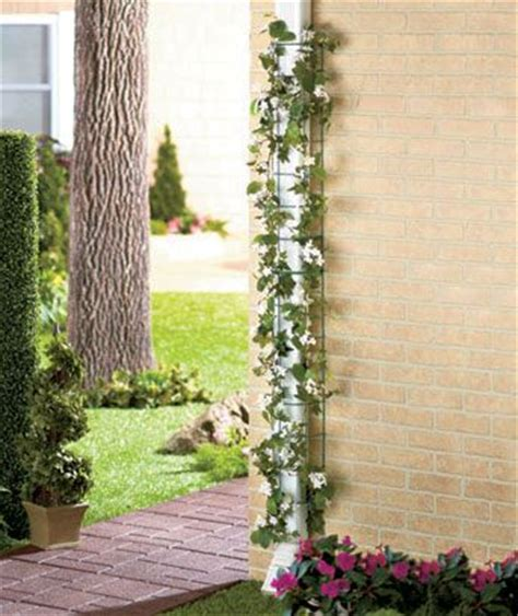 Downspout Trellis Downspout Garden Trellises Out Side Pinterest