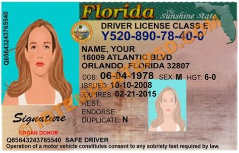 florida id card template psd template editable with adobe photoshop this is florida usa state drivers license psd