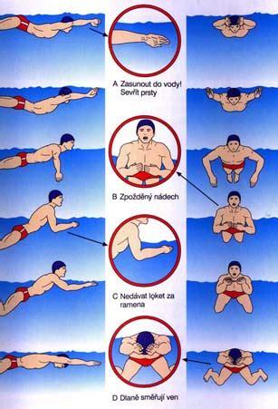 plavání   Útvs Ústav tělesné výchovy a sportu   Útvs