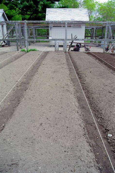 Preparing The Vegetable Garden For Planting The Martha Lime For Vegetable Garden