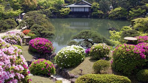 japanese garden pictures japanese garden wallpaper hd flowers a japanese garden house