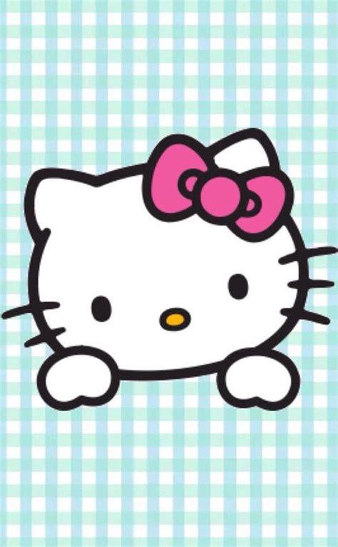 imagenes tiernas de hello kitty m 225 s de 25 ideas fant 225 sticas sobre hello kitty imagenes en