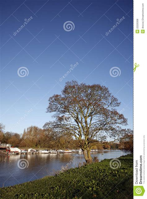 thames river view river view of thames royalty free stock photos image