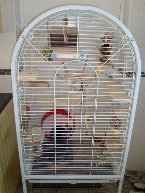 cage of chinchillas hub