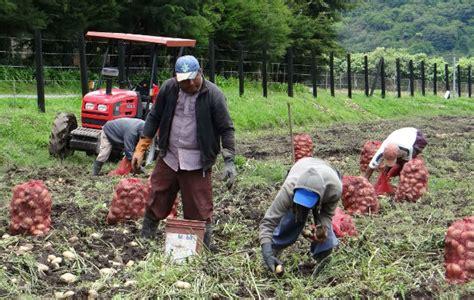 imagenes satelitales uso agropecuario aprueban incentivos al sector agropecuario panam 225 am 233 rica