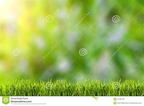 wallpaper abstract grass abstract natural backgrounds on green grass stock photo