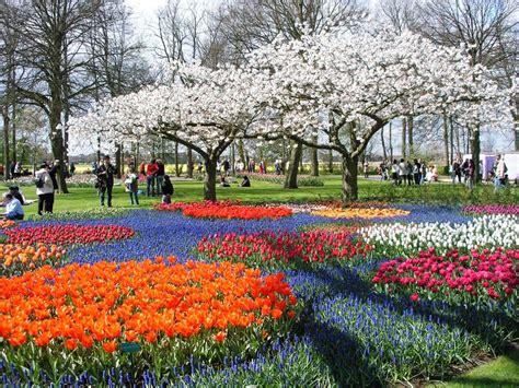 galeri gambar taman bunga  menakjubkan pernik dunia