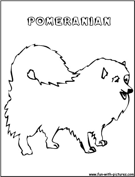 pomeranian coloring page az coloring pages