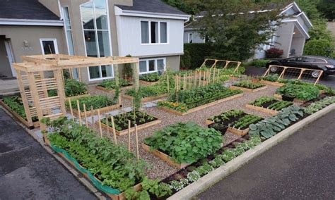 landscaping patio front yard vegetable garden ideas front