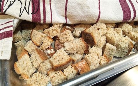 homemade bread cubes and bread crumbs for stuffing