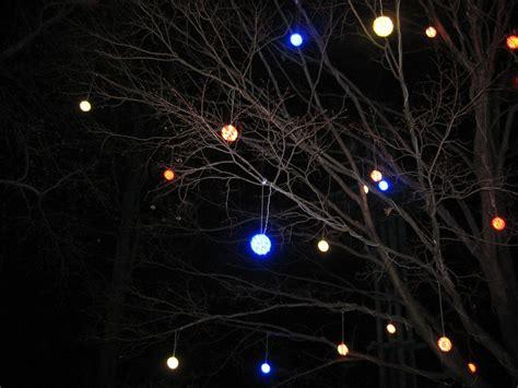 dc zoo lights dc zoolights tree by cat doom on deviantart