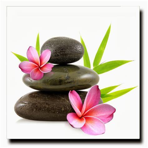 zen images images pour blogs et images zen galets et fleurs