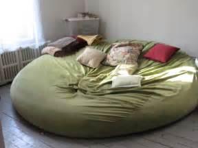 Bean Bag Bed Bring My Owl Back