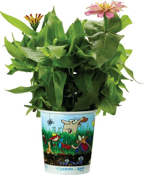 Grow Cup grow cups eco friendly garden kits bugs china wholesale