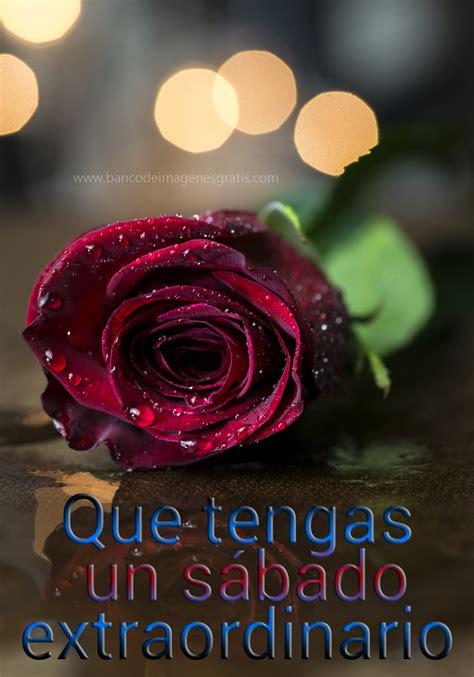 imagenes de feliz sabado con rosas rojas imagenes de arreglos florales rosa