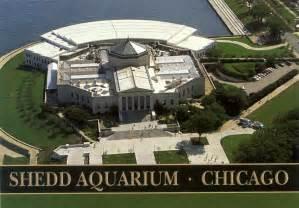 shedd aquarium chicago illinois danley sound labs install