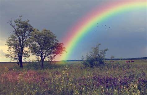 kumpulan gambar pelangi  langit  indah