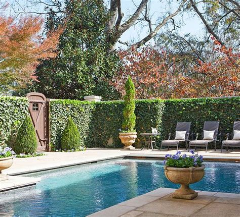 backyard pool fence ideas 16 pool fence ideas for your backyard awesome gallery