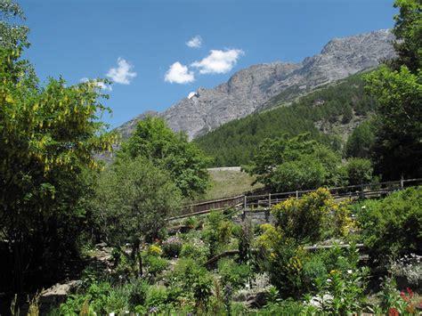 giardini botanici lombardia giardino alpino botanico rezia bormio rete orti