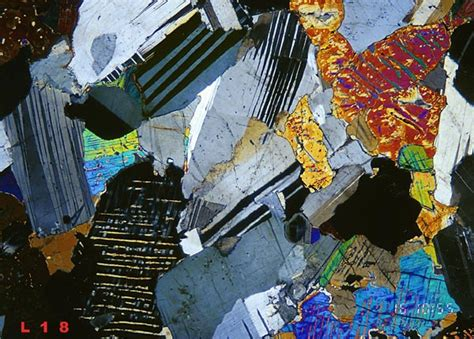 thin section gabbro thin section