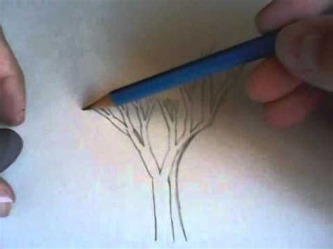 dibujos realistas tutorial 17 best images about drawing tutorials trees and leaves