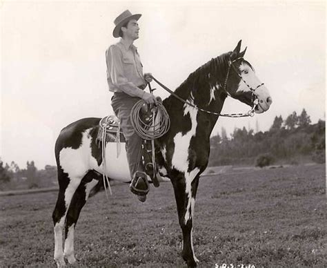 the greatest horses in western cinema ride tv unbridled 241 best images about gregory peck on rosalind to kill a mockingbird and