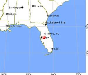 Mulberry Florida Map by Mulberry Florida Fl 33860 Profile Population Maps