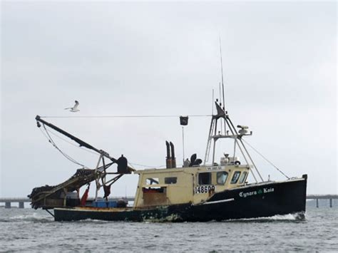 scallop boat scallop boats commercial fishing