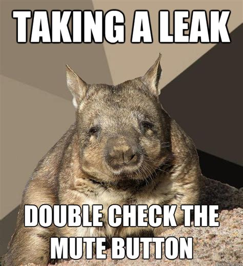 work from home wombat memes quickmeme