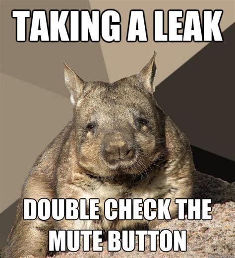 Wombat Memes - work from home wombat memes quickmeme