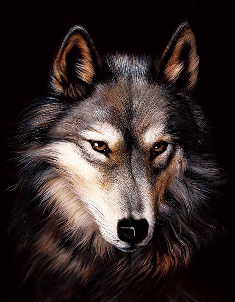 10 best wolf makeup images on pinterest artistic make up 3d wildlife art pictures to pin on pinterest pinsdaddy