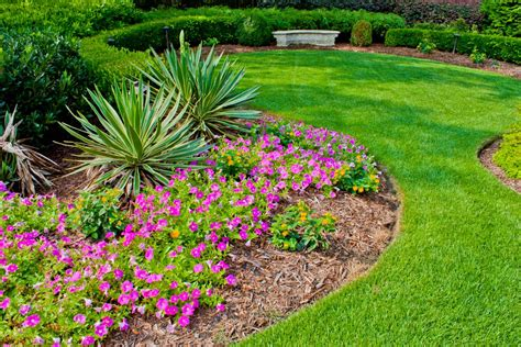 Landscape Flowers Easy Landscaping Ideas For Your Back And Front Yard