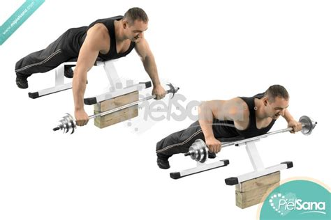 incline bench dumbbell rows incline bench barbell row