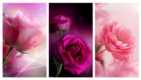 wallpaper xiaomi pink top 10 live wallpaper apps for xiaomi mi redmi phones