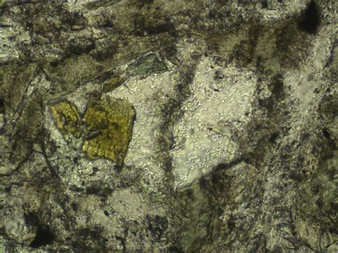 Epidote Thin Section by Proc Iodp 309 312 Site 1256