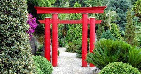 japanse tuin planten kopen een japanse tuin aanleggen deze gebruiken moet je kennen
