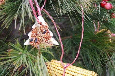 edible tree ornaments how to get christmas spirit how