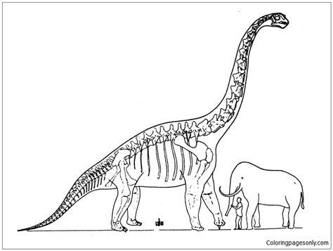brachiosaurus and elephant coloring page free coloring