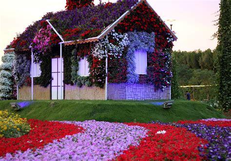Garden Decoration Dubai dubai miracle garden uae 183 free photo on pixabay