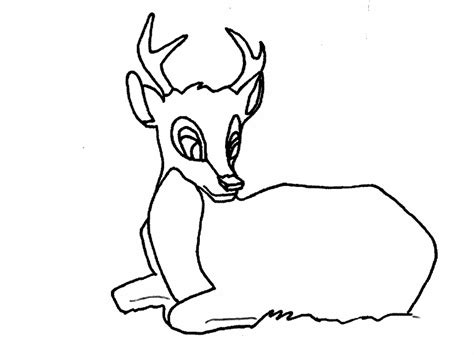 exploring nature coloring pages kids coloring whitetail deer coloring page exploring