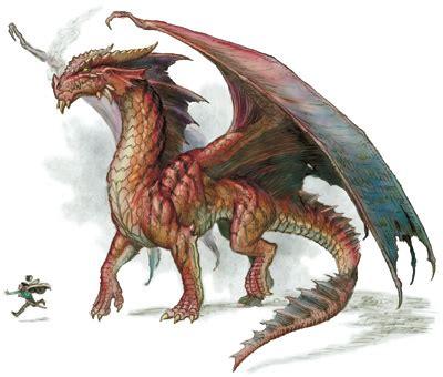 dragon types draconika