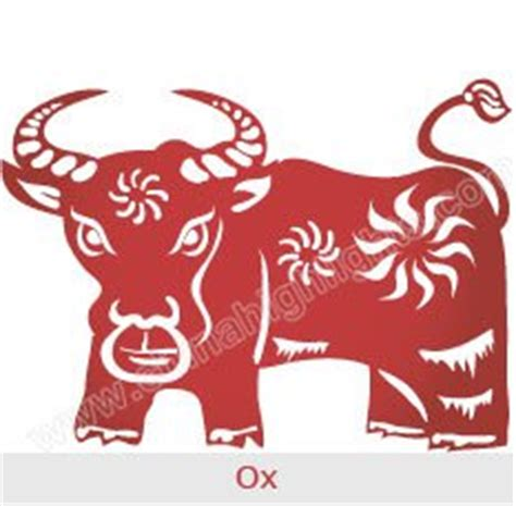 new year ox year year of the ox zodiac luck personality