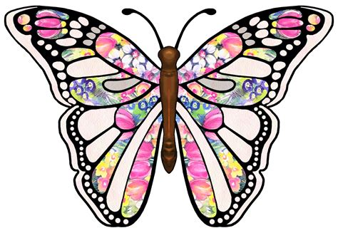 printable images butterflies butterfly clipart clipart panda free clipart images