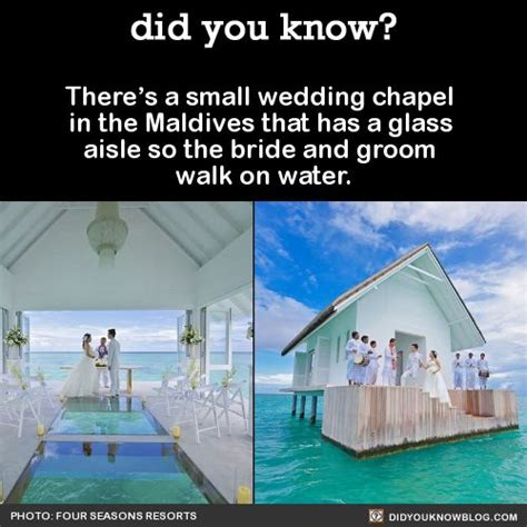 Maldives Wedding Glass Aisle by 580 Best Architecture Images On Scenery