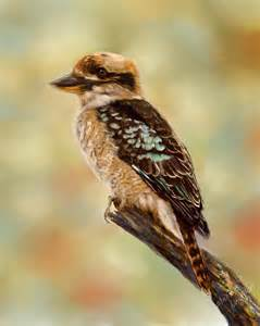 What Goes Inside Duvet Cover Kookaburra Australian Bird Painting Painting By Michelle