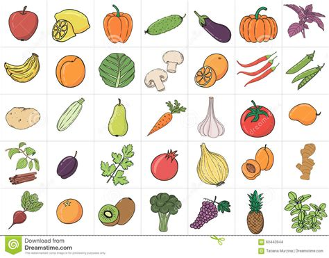 vitamin c vegetables names doodle fruits and vegetables with name stock