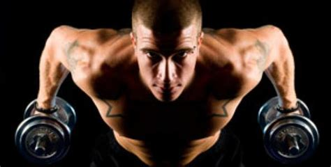 z 12 supplement zma supplements what are they and what can they do for you