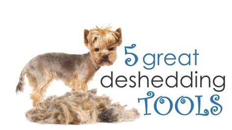 deshedding tool for dogs what is the best deshedding tool for dogs how to choose herepup