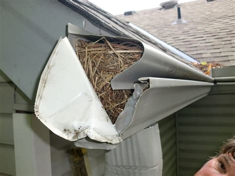 Gutters Protection 7 Hacks To Gutterglove Of Cincinnati Cincinnati Oh 45230 Angies List