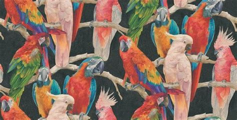flamingo wallpaper eastenders parrots 823608 albany wallpapers saw this in